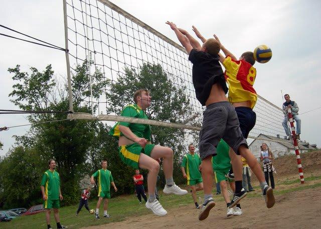 Oświata kultura i sport