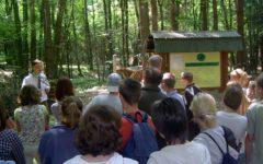 Leśna Ścieżka Dydaktyczna w Nadleśnictwie Lidzbark