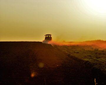 Uwaga młodzi rolnicy!  Czekają na was wysokie premie!